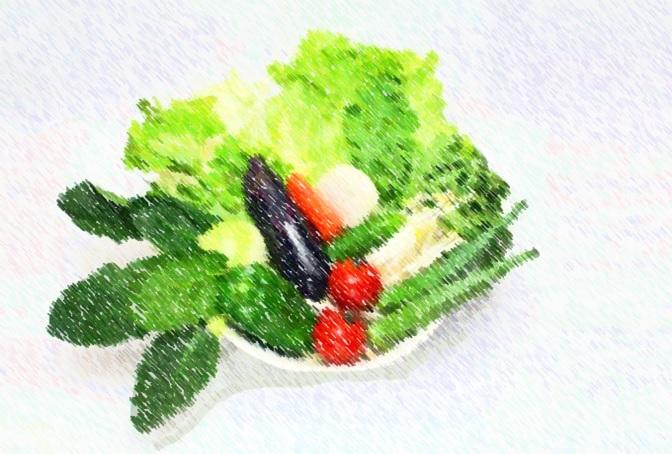 胃腸の状態を良く保つには、野菜・果物・発酵食品 | 健康トピックス