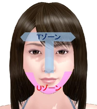 2種類の肌が同居する混合肌 | 美容トピックス
