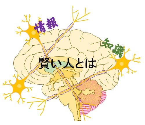 記憶は「日常」よりも「非日常」 | 賢脳トピックス