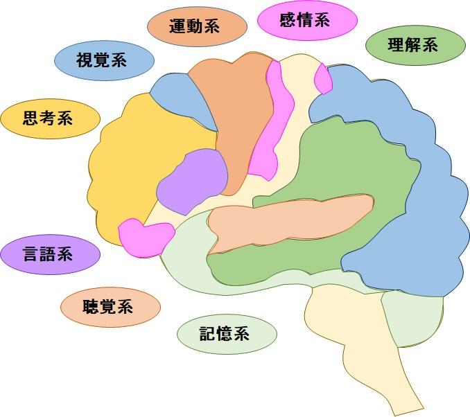 単語とは他人と共有できる脳のようなもの | 賢脳トピック