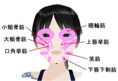 マスクをしてても笑顔はわかる顔の表情筋 | 美容トピックス